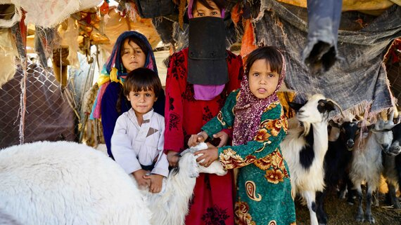 Four displaced children with family goats in a recently-built IDP settlement near Marib in central Yemen